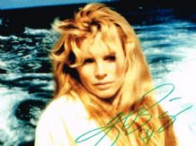 Kim Basinger Autograph Signed Photo